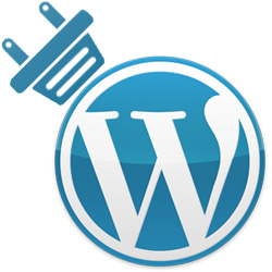 Plugin o archivo functions.php WordPress