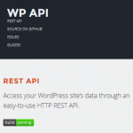 WordPress JSON REST API
