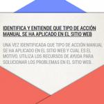 Acciones manuales Google