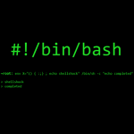 bug bash shellshock