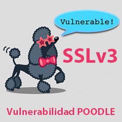 Proteger servidor contra la vulnerabilidad POODLE SSLv3