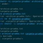 Proteger archivos y carpetas en Linux con chattr