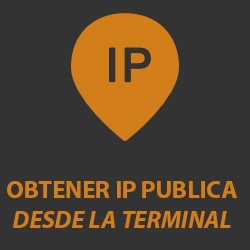 Averiguar IP pública desde la terminal