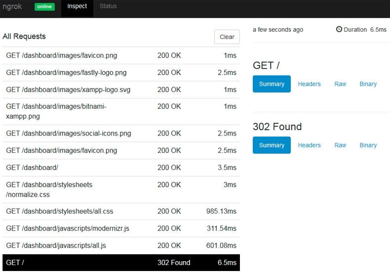 inspeccionar peticiones http con ngrok