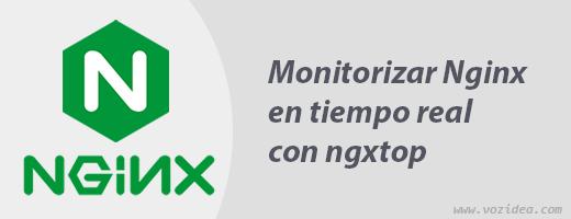 Monitorizar Nginx en tiempo real con ngxtop