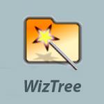 WizTree icono