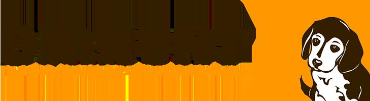 Dirhunt, escanea directorios web de forma rápida
